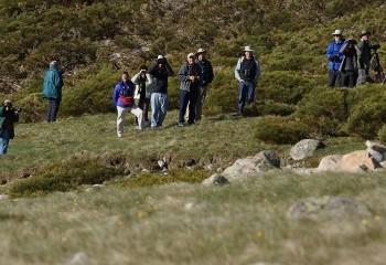Sierra de Gredos I