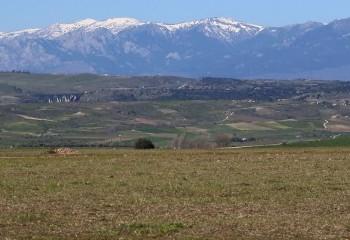 Llanos del Jarama y los Patones I