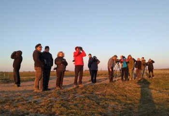 Foto de Our group in Belarus looking for Bisons!