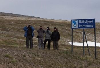 Foto de Batsfjord