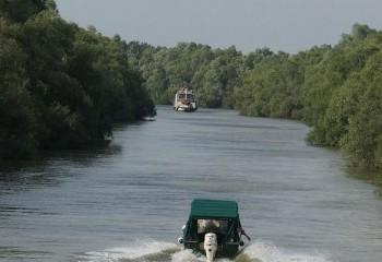 Foto de Delta del Danubio