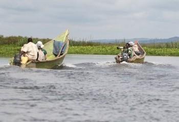 Foto de Uganda 2019: Mabamba Swamp